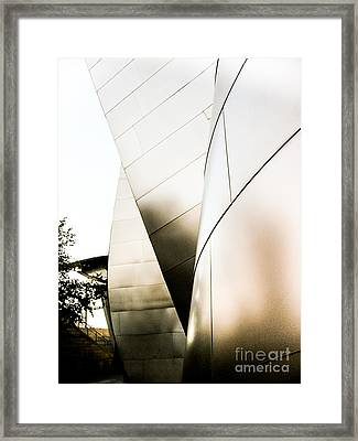 Landscape A10y Los Angeles Framed Print by Otri Park