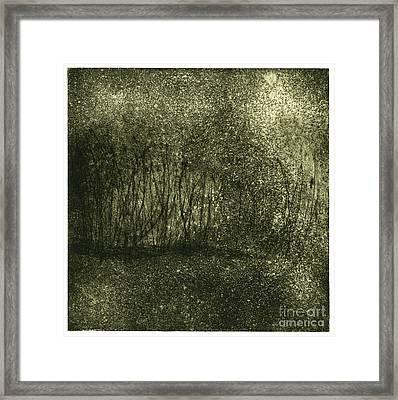 Mystical Landscape - Plants -reed - Botany - Biotope - Habitat - Etching - Fine Art Print - Stock Image Framed Print by Urft Valley Art