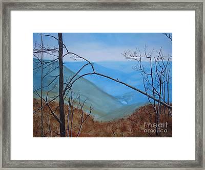 Lane Pinnacle Framed Print by Stuart Engel