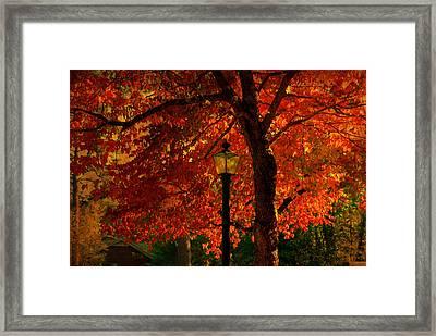 Lantern In Autumn Framed Print by Susanne Van Hulst