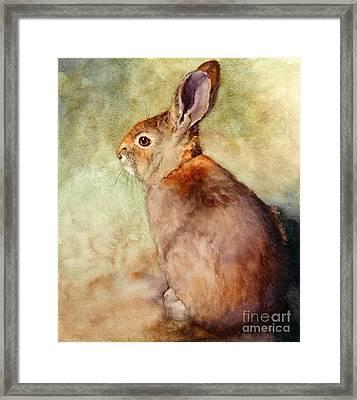 Lapin Framed Print by Bonnie Rinier