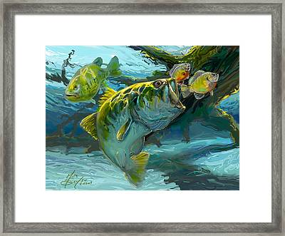 Large Mouth Bass And Blue Gills Framed Print by Savlen Art