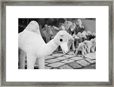 Large Soft Toy Stuffed Camel Souvenir At Market Stall In Nabeul Tunisia Framed Print by Joe Fox