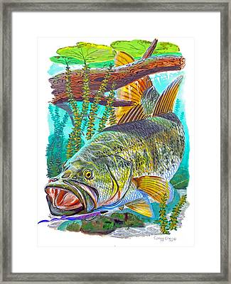 Largemouth Bass Framed Print by Carey Chen