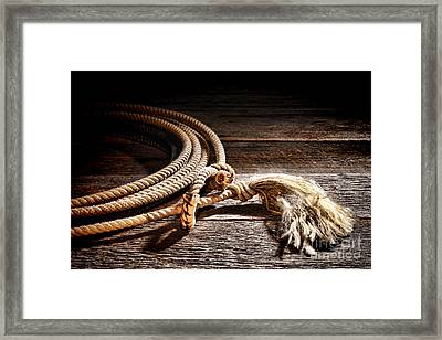 Lasso Framed Print by Olivier Le Queinec