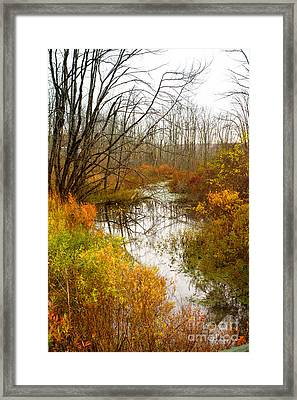 Last Burst Of Color Framed Print by A New Focus Photography