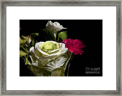 Last Day Framed Print by Amanda Barcon