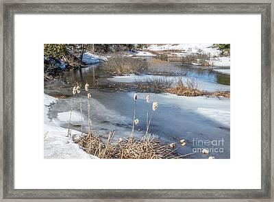 Last Days Of Winter Framed Print by Jola Martysz