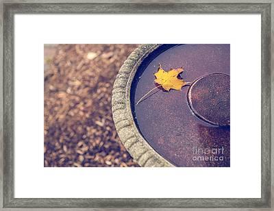 Last Leaf  Framed Print by Diane Diederich