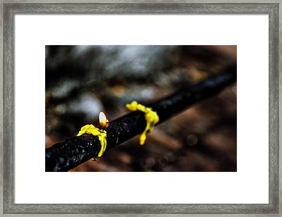 Last Second Framed Print by Suradej Chuephanich
