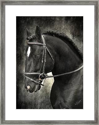 Latcho's Shadow  Framed Print by Fran J Scott