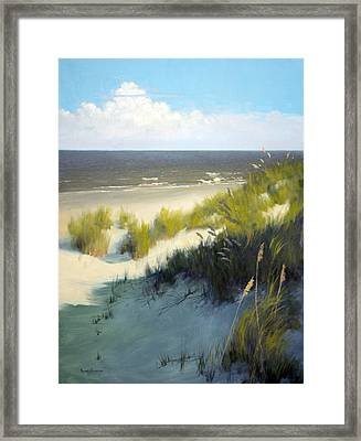 Late Afternoon Framed Print by Armand Cabrera