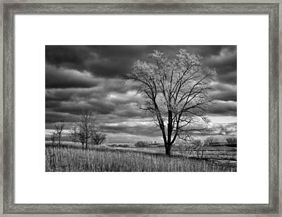 Late Afternoon At Walnut Creek Lake #2 - Black And White Framed Print by Nikolyn McDonald
