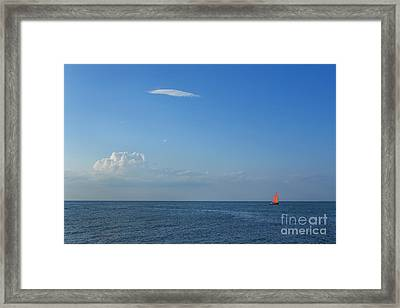 Late Afternoon Sail Framed Print by Diane Diederich