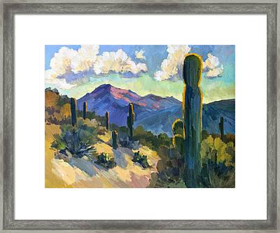 Late Afternoon Tucson Framed Print by Diane McClary