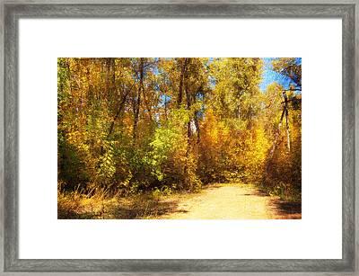 Late Autumn Colours Framed Print by Svetlana Sewell
