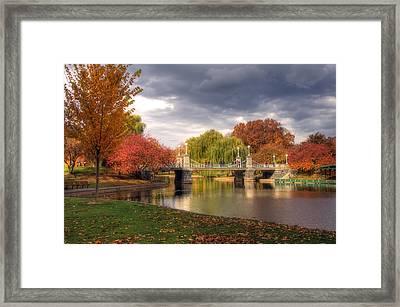 Late Autumn Framed Print by Joann Vitali