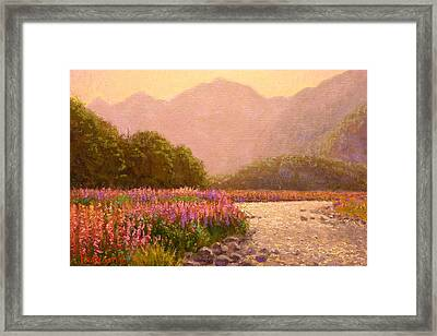 Late Light Egglinton Valley Framed Print by Terry Perham