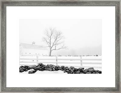 Late Winter Framed Print by Alana Ranney