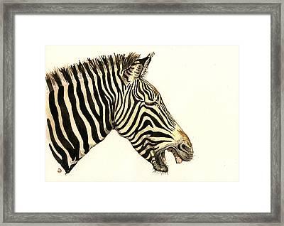 Laughing Zebra Framed Print by Juan  Bosco