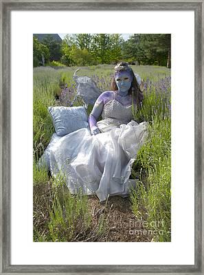 Lavender Fairy Queen Framed Print by Graham Foulkes