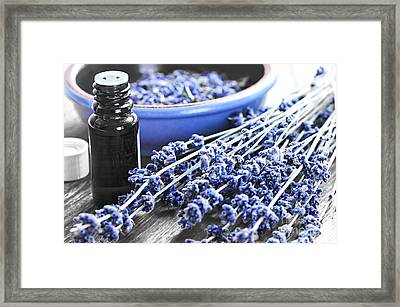 Lavender Herb And Essential Oil Framed Print by Elena Elisseeva