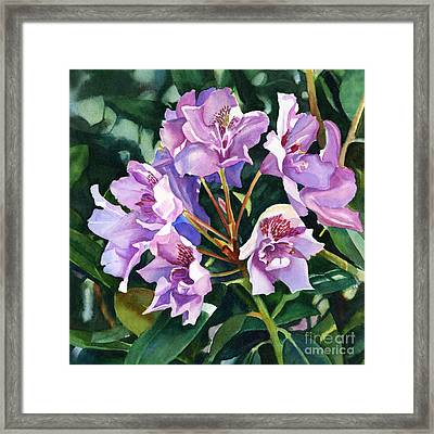 Lavender Rhododendron Square Design Framed Print by Sharon Freeman