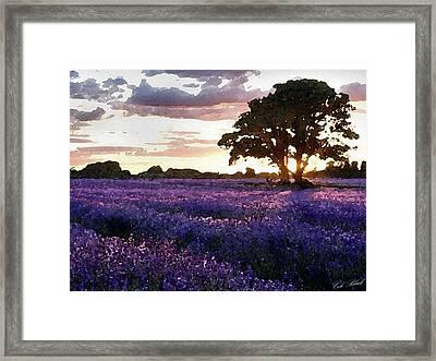 Lavender Sunset Framed Print by Cole Black