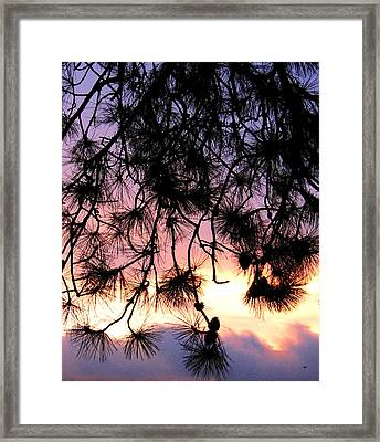Lavender Sunset Painting Framed Print by Will Borden