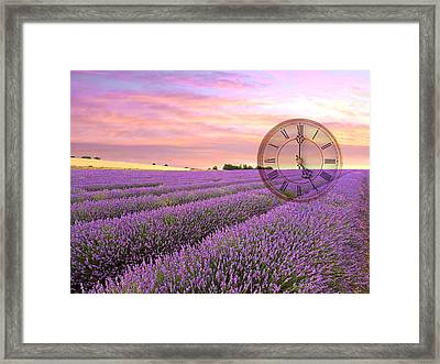 Lavender Time Framed Print by Gill Billington