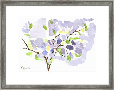 Lavender With Missouri Dogwood In The Window Framed Print by Kip DeVore