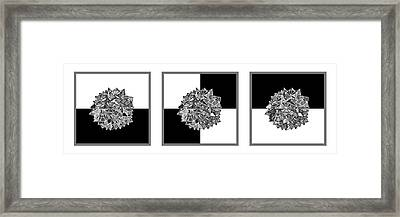 Law Of Gravity Framed Print by Sumit Mehndiratta