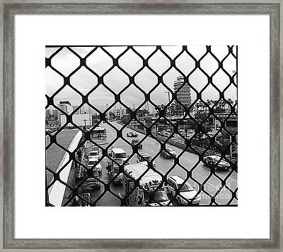 Security ? Framed Print by Fei A