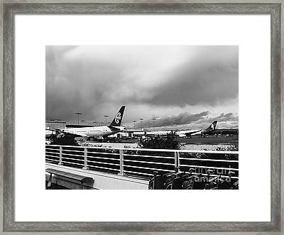 The Smell Of Hawaii Framed Print by Fei A