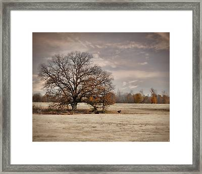 Lazy Autumn Day - Farm Landscape Framed Print by Jai Johnson