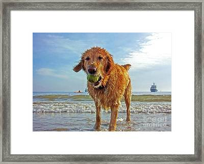 Lazy Summer Days At The Beach Framed Print by Nishanth Gopinathan