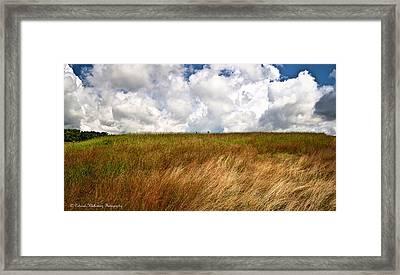 Leaden Clouds Over Field Framed Print by Deborah Klubertanz