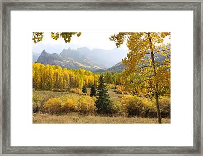 Leaf Days Framed Print by Eric Glaser
