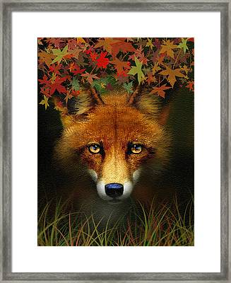 Leaf Fox Framed Print by Robert Foster