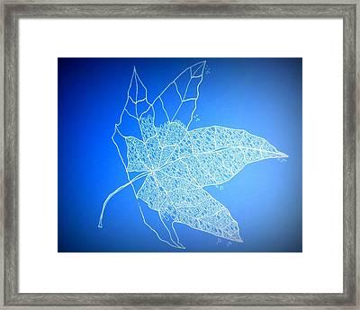 Leaf Study 1 Framed Print by Cathy Jacobs
