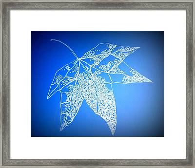 Leaf Study 4 Framed Print by Cathy Jacobs