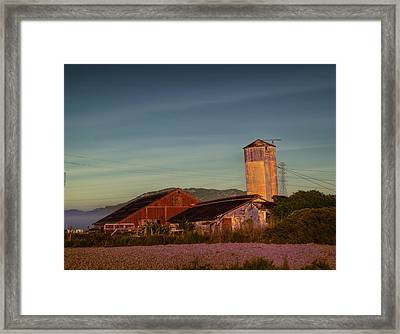 Leaning Silo  Framed Print by Bill Gallagher