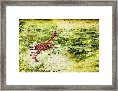 Leap Into Spring Framed Print by Jon Van Gilder