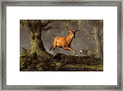 Leaping Stag Framed Print by Daniel Eskridge