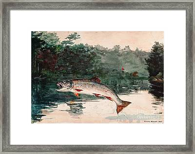 Leaping Trout Framed Print by Pg Reproductions