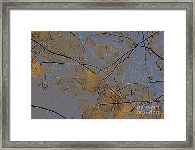 Leaves Framed Print by Carol Lynch