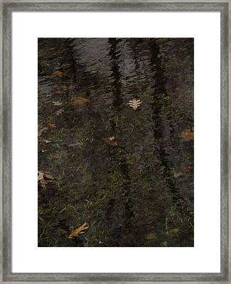 Leaves In The Waves Framed Print by Guy Ricketts