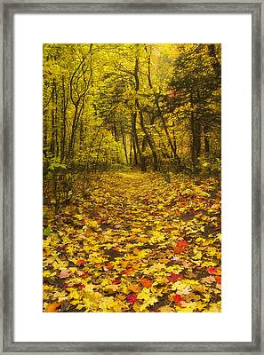 Leaving The Way Framed Print by Peter Coskun