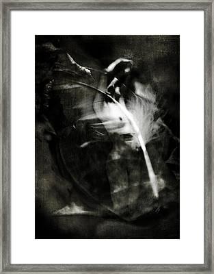 Leda And The Swan Framed Print by Rebecca Sherman