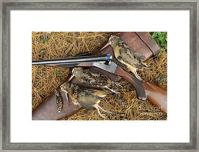 Lefever And Timberdoodle - D004023 Framed Print by Daniel Dempster